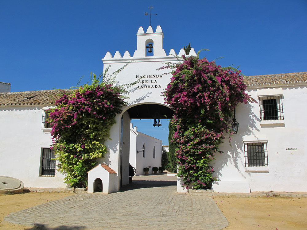 Por qué la Hacienda de La Andrada es la mejor para celebrar tu boda